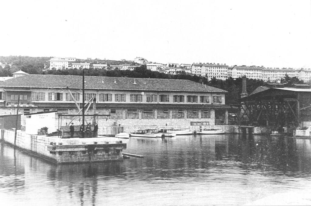 Il silurificio nel 1910 In allen Häfen war Österreich. Die österreichisch-ungarische Handelsmarine, di H. F. Mayer, D. Winkler, da Wikimedia Commons)
